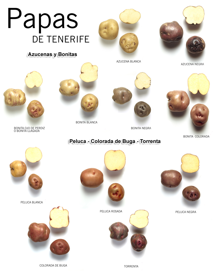 papas-de-Tenerife-1-copy